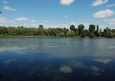 Rozlewisko rzeki Oławy